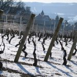 La Bourgogne sous la neige